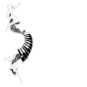 Federation-of-festivals-logo